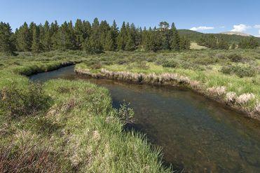 268 High River COURT ALMA, Colorado 80420 - Image 1