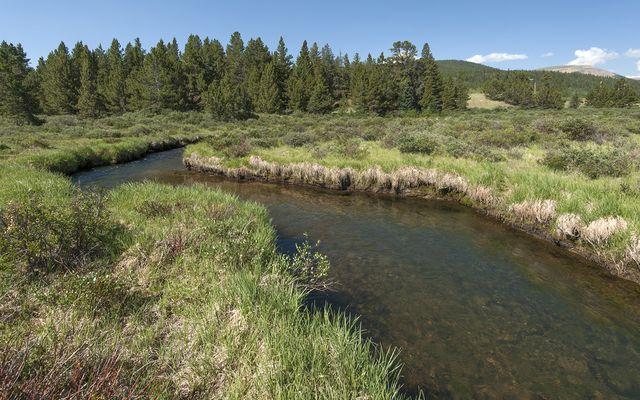268 High River COURT ALMA, Colorado 80420