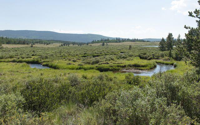 384 High River COURT ALMA, Colorado 80420