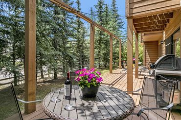 28 Castle Peak Lane Edwards, CO - Image 6