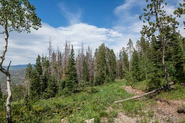 Photo of 3990 Bellyache Ridge Road Wolcott, CO 81631 - Image 5