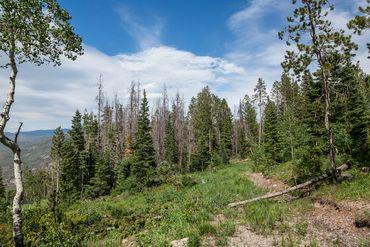 Photo of 3990 Bellyache Ridge Road Wolcott, CO 81631 - Image 5