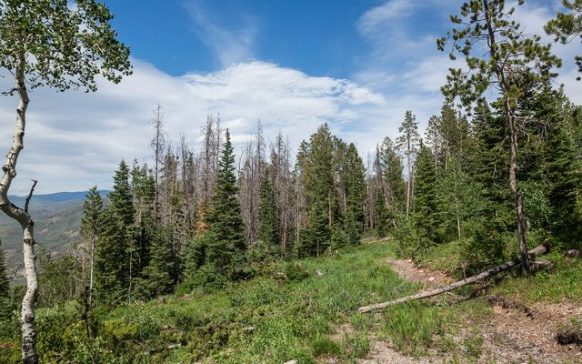 3990 Bellyache Ridge Road - photo 4