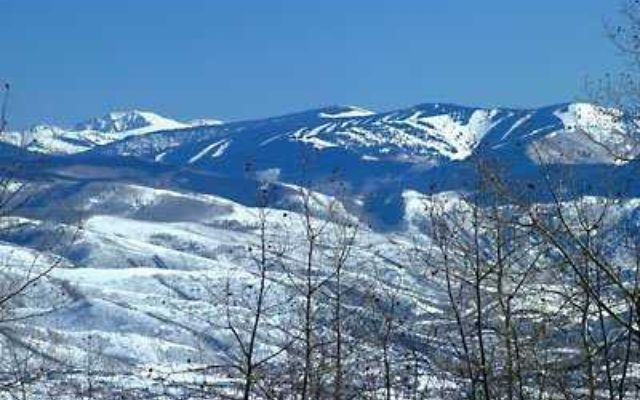 3990 Bellyache Ridge Road - photo 8
