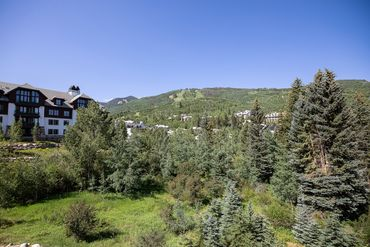 Photo of 120 Offerson Road # 1320 Beaver Creek, CO 81620 - Image 8
