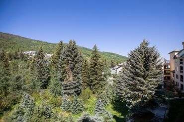 120 Offerson Road # 1320 Beaver Creek, CO - Image 9