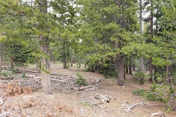 1690 BOBCAT LANE FAIRPLAY, Colorado 80440