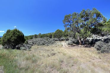 1028 Hernage Creek Road Eagle, CO 81631 - Image 1