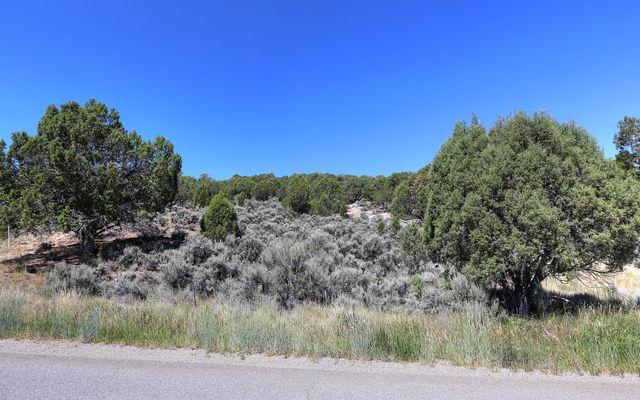 1028 Hernage Creek Road - photo 3