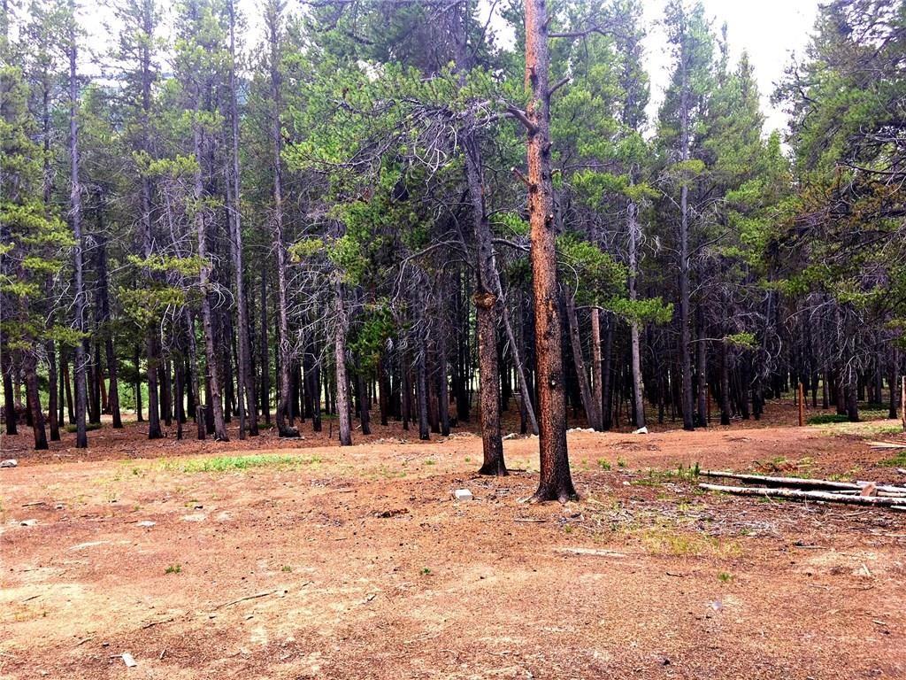 4202 Highway 91 LEADVILLE, Colorado 80461