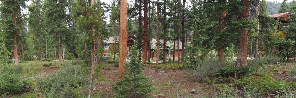 52 Alders LANE KEYSTONE, Colorado 80435