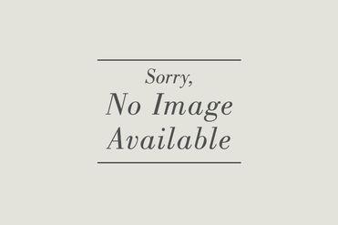 8658 Walter Scott Placer Leadville, CO 80461 - Image 1
