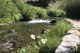 341 Davenport LOOP BRECKENRIDGE, Colorado 80424 - Image 39
