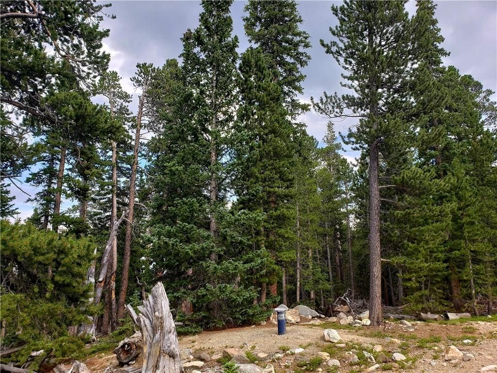 188 GOLD Trail Cutoff FAIRPLAY, Colorado 80440