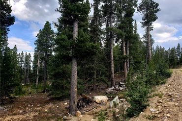 188 GOLD Trail Cutoff FAIRPLAY, Colorado - Image 4