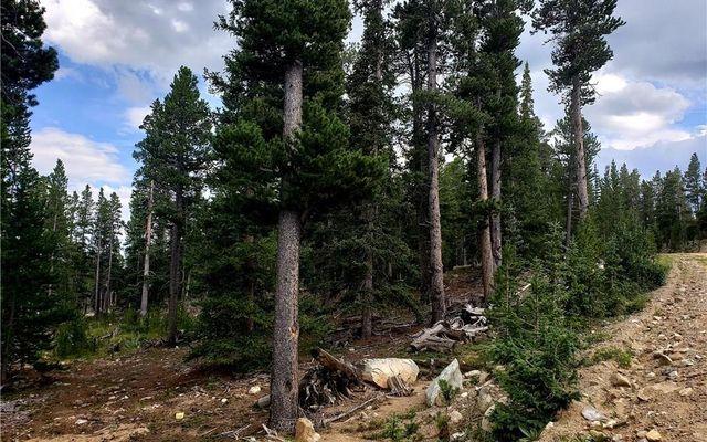 188 Gold Trail Cutoff - photo 3