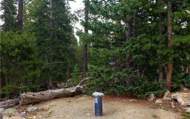 188 Gold Trail Cutoff - photo 5