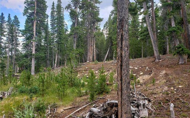 188 Gold Trail Cutoff - photo 6