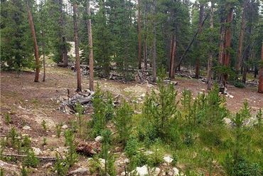 188 GOLD Trail Cutoff FAIRPLAY, Colorado - Image 8