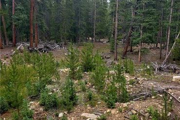 188 GOLD Trail Cutoff FAIRPLAY, Colorado - Image 10