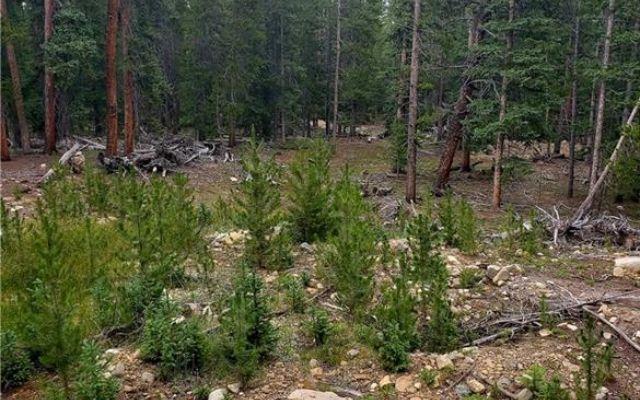188 Gold Trail Cutoff - photo 9