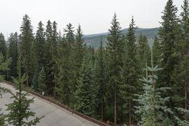280 Trailhead DRIVE # 3022 KEYSTONE, Colorado 80435 - Image