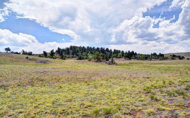 TBD Xtha TRAIL HARTSEL, Colorado 80449