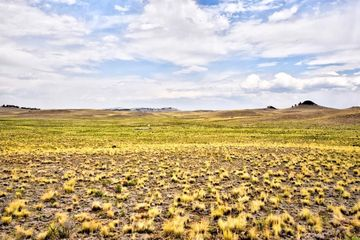 TBD Lenape TRAIL HARTSEL, Colorado