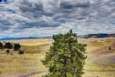 312 AHLERS LANE HARTSEL, Colorado - Image 24