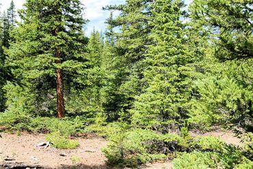 545 SILVERHEELS PLACE FAIRPLAY, Colorado - Image 11