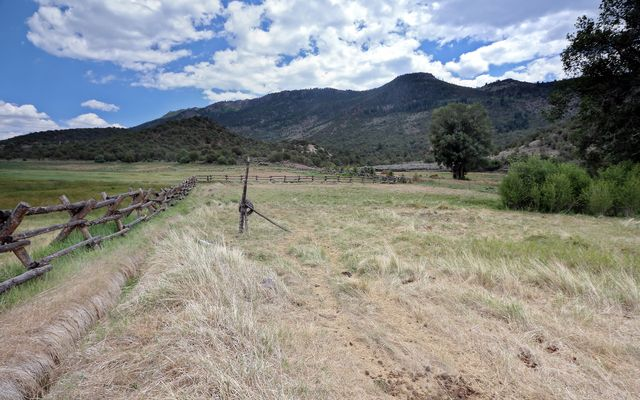 1860 Copper Spur Road - photo 10