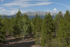 7 S RODEO DRIVE S LEADVILLE, Colorado 80461 - Image