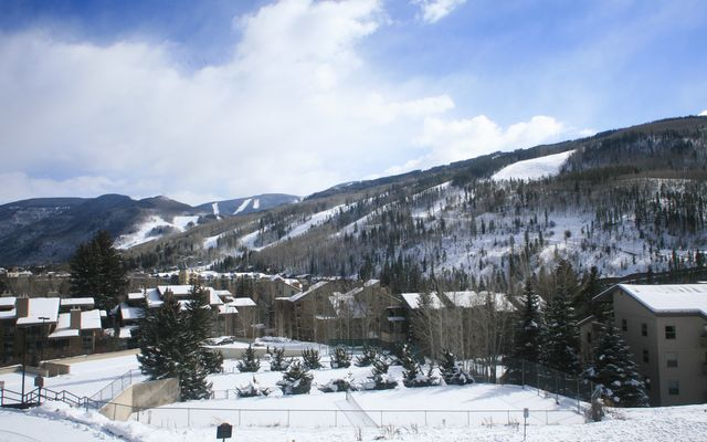1063 Vail View Drive # 26 - photo 3