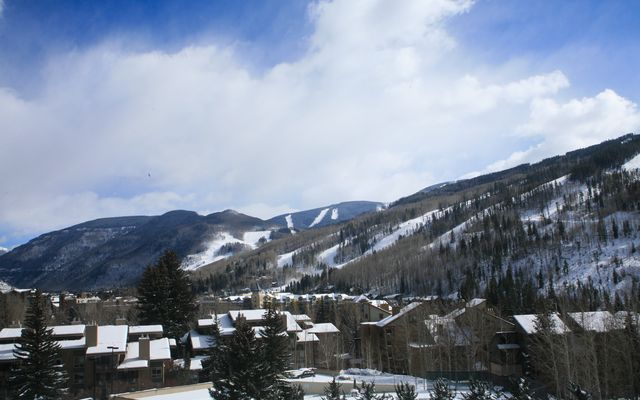 1063 Vail View Drive # 26 - photo 4