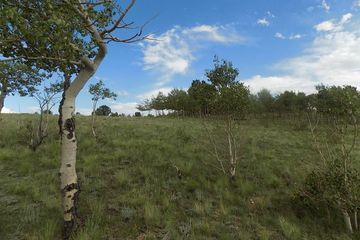 285 TATANKA TRAIL COMO, Colorado