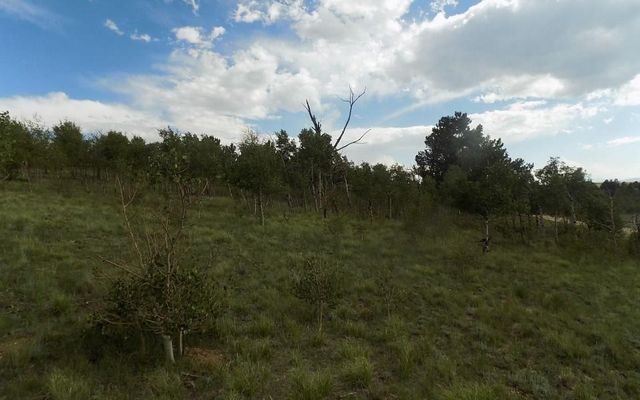 285 Tatanka Trail - photo 5
