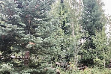 45 GCR 161 KREMMLING, Colorado - Image 6