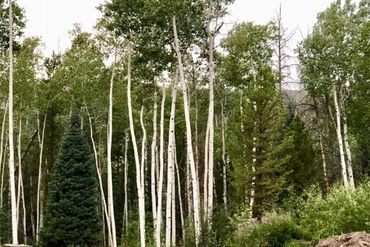 45 GCR 161 KREMMLING, Colorado - Image 8