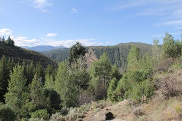 300 Timber Springs Drive Edwards, CO 81632 - Image 1