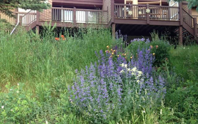 1750 S Frontage Road W # A3 Vail, CO 81657