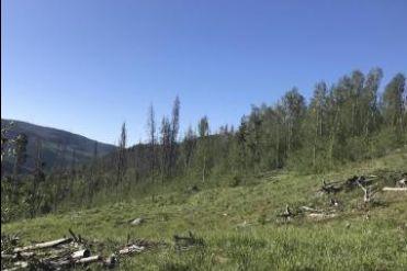 2984 GCR 2415 KREMMLING, Colorado 80459 - Image 1