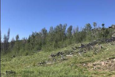 2984 GCR 2415 KREMMLING, Colorado - Image 6