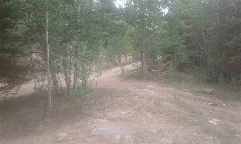 TBD County Road 665 ALMA, Colorado 80420