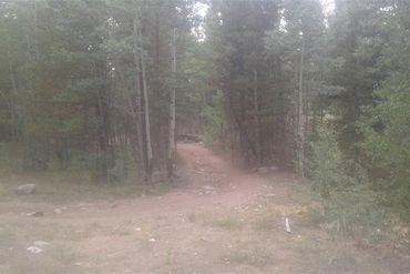 TBD County Road 665 ALMA, Colorado - Image 4