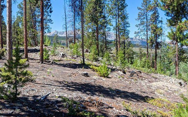 643 Highfield Trail - photo 8