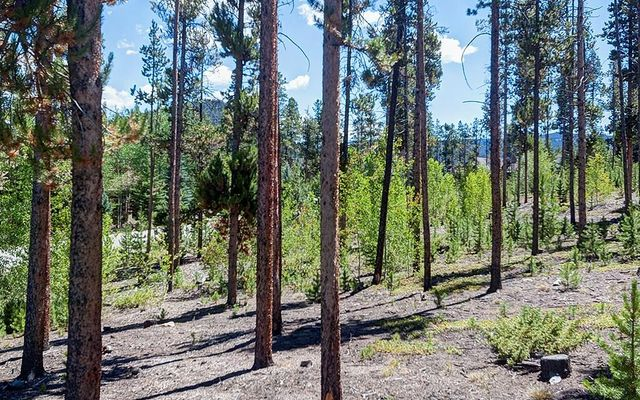 643 Highfield Trail - photo 9
