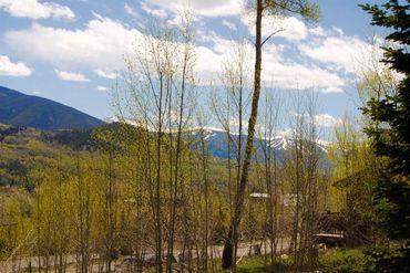 1445 Golden Eagle ROAD SILVERTHORNE, Colorado - Image 17