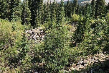 080 County Road 671 BRECKENRIDGE, Colorado - Image 6