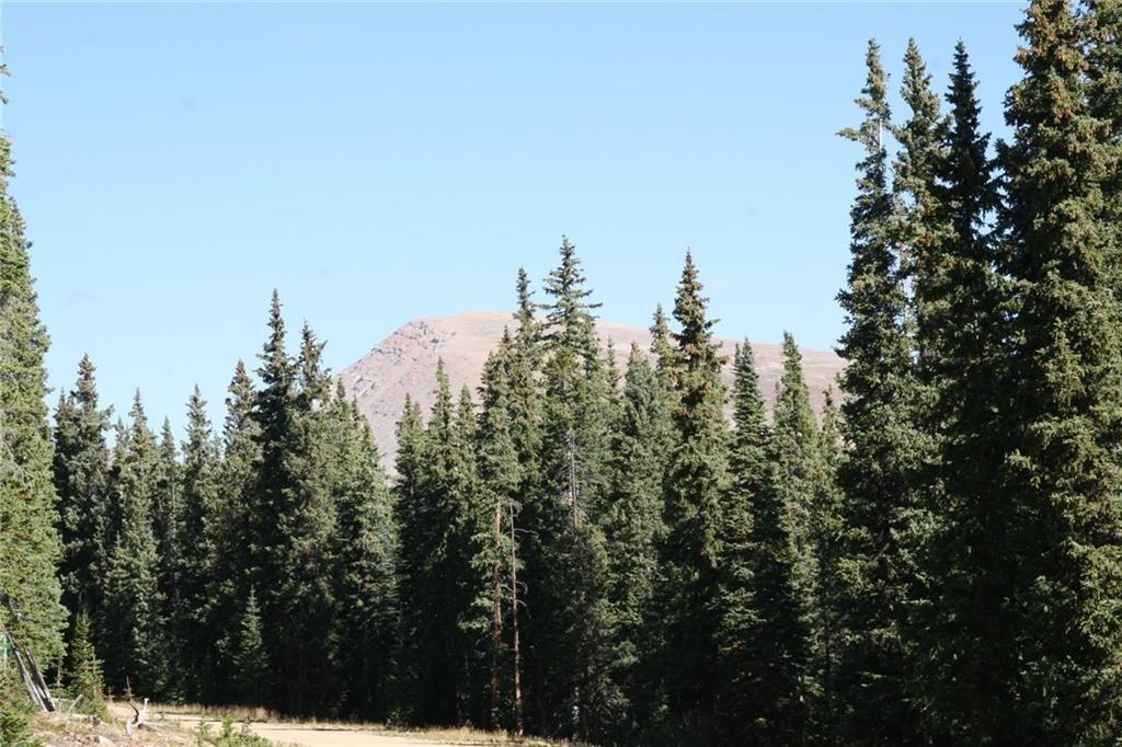 687 PRUNES PLACE FAIRPLAY, Colorado 80440