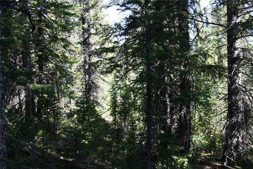 687 PRUNES PLACE FAIRPLAY, Colorado - Image 11